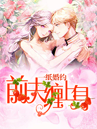 《一纸婚约:前夫缠上身》唐三小姐小说最新章节,陆漫,陆雪全文免费阅读